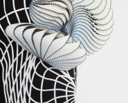 monochrome-fabric-with-3d-printed-elements