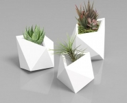 poly-plant-s-3d-printed-accessories-home-decor